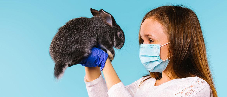 Rolle von Tieren in der Pandemie · Foto: Pixabay